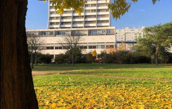 Le Grand Parc, un quartier au nord de Bordeaux en pleine mutation et repopulation